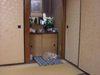 20080112kitune_neko_01