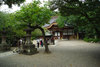 Jindaiji20081005h_3
