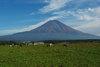Fuji200811a