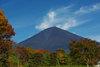 Fuji200811c