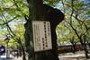 Yasukunijinjya2010_1103l