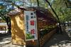 Yasukunijinjya2010_1103m