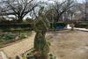 Bajikouen2011_0123n