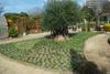 Bajikouen2011_0123o