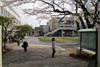 Tochijisen2011_0410a