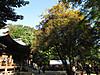 Jindai2012_1021z