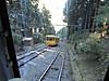 Yamaaruki20121002i