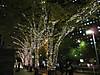 Shinjuku2012_1122j
