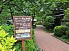 Sawai20130525j