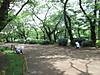 Inokashira20130617c