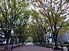 Bajikouen20141027a_2