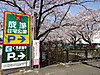 Seijou20150330a