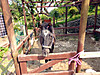 Sanyou20160501b