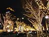 Omotesandou20171204a_2