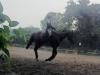 Django20200703c