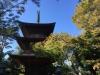 Goutokuji20191105c